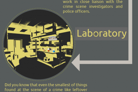 Forensic Science Facts - By Mocomi.com Infographic