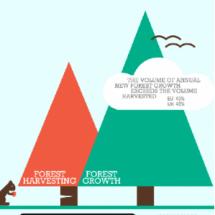 Forests and land-use impact on climate Infographic