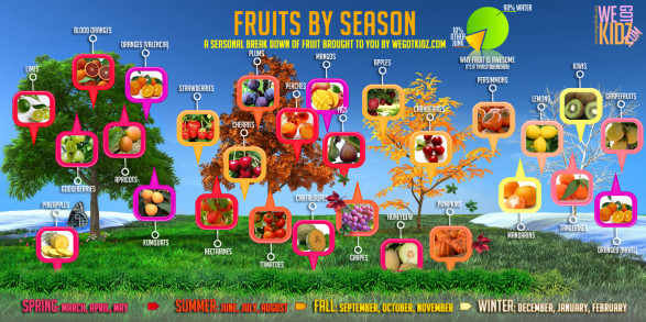 Fruits by the Season