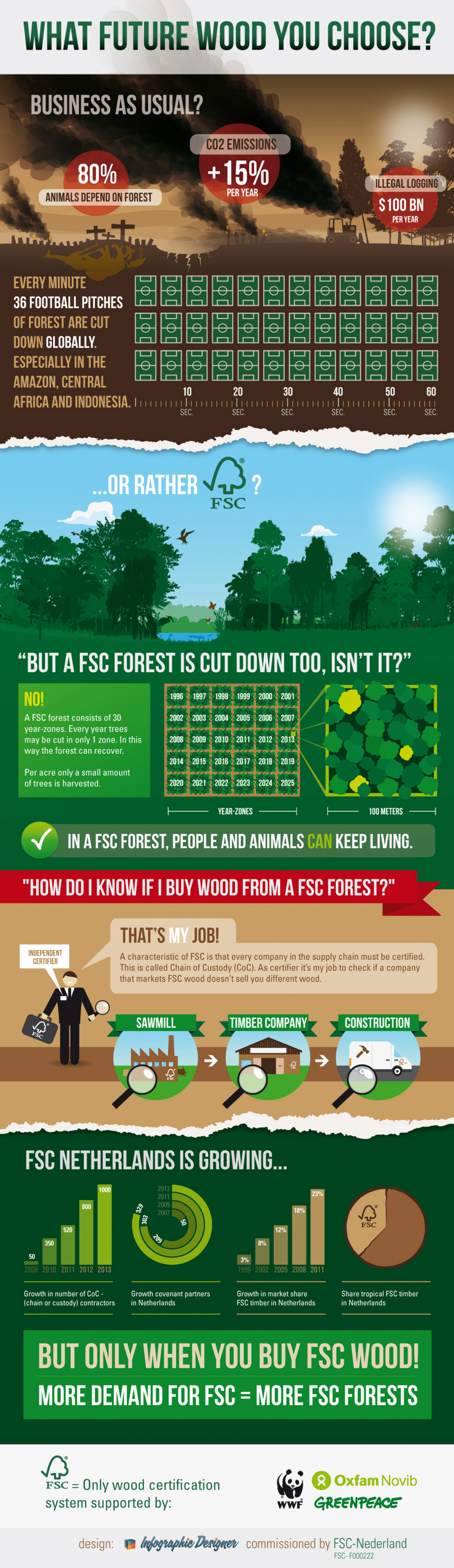 What future wood you choose? Infographic