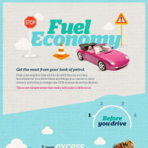 Fuel Economy  Infographic