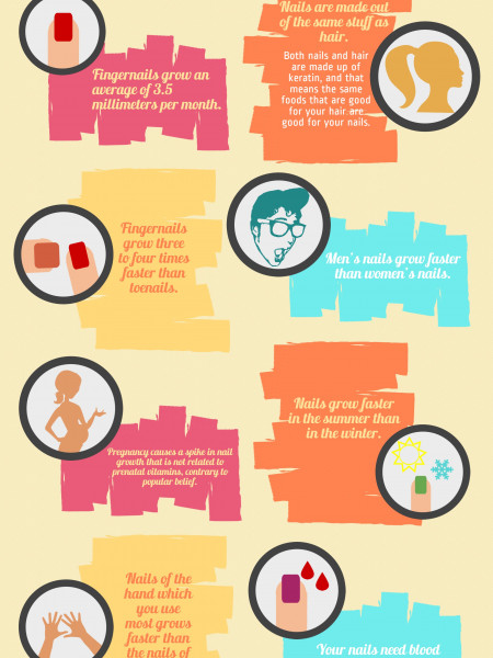 Fun Facts About Nails Infographic
