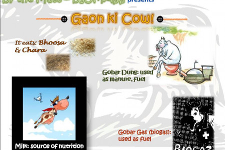 Gaon Ki Cow! (Cow from Village) Infographic