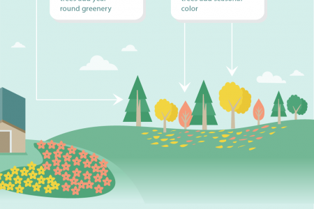 Garden Design: Perfet Planning For DIY Landscaping Infographic