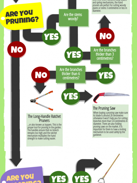 Gardening Tools Guide - Which One Should You Choose? Infographic
