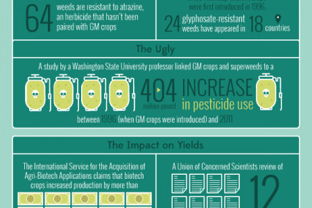 Genetically Modified Food (GMO) – The Good, The Bad and The Ugly Infographic