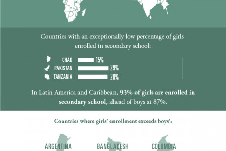 Girl's Education: The 2013 Report Card Infographic
