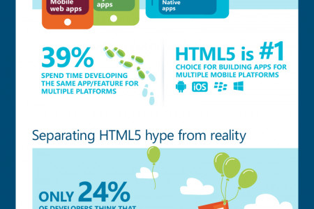 Global Developer Survey Infographic