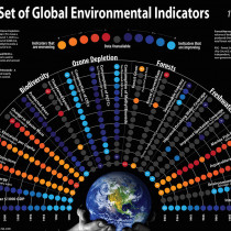 Global Environment Indicators (1990-2005) Infographic