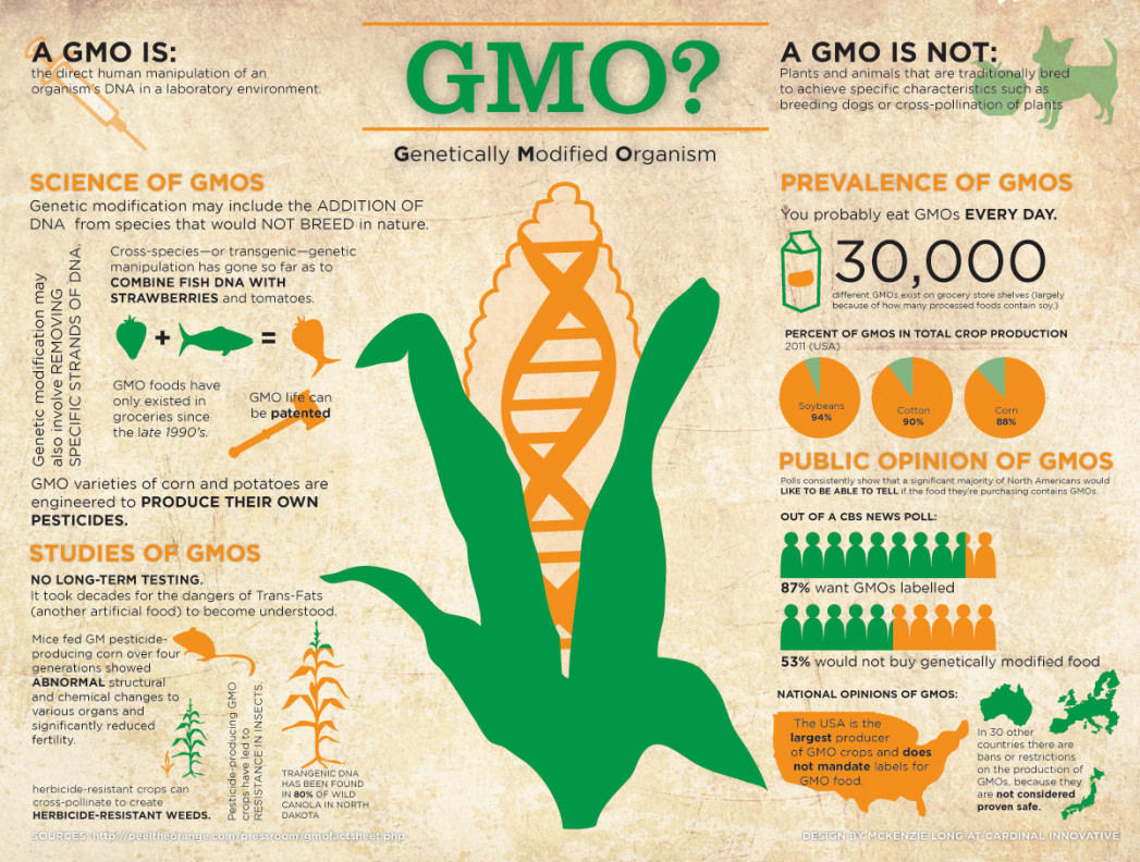 gmo foods to feed the people of the future Is genetically engineered food dangerous many people seem to the war against genetically modified organisms is full of you with early access to future.