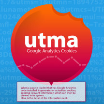 Google Analytics Cookie Infographic