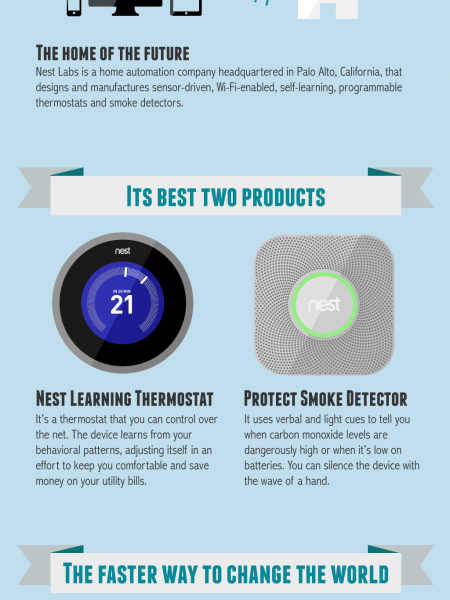 Google buys Nest Infographic