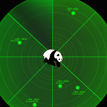 Google Panda Radar & Search engine  Infographic