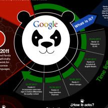 Google Panda Infographic