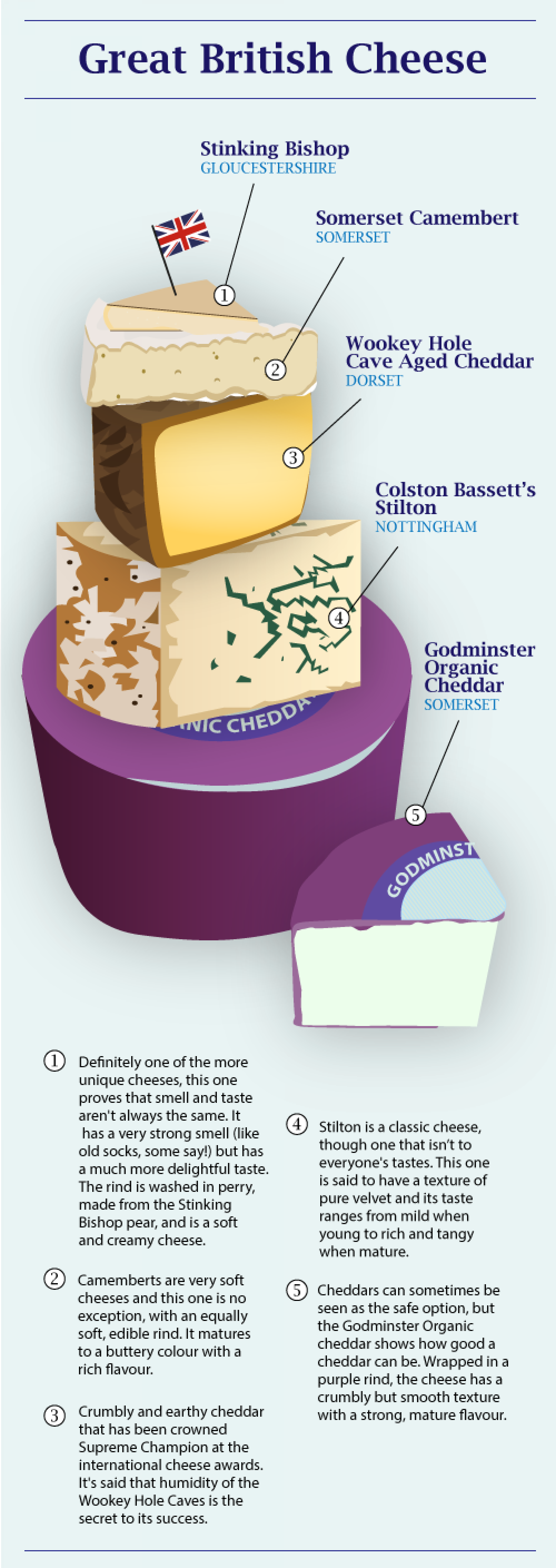 Great British Cheese Infographic
