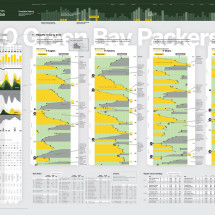 Green Bay Packers 2010 Infographic