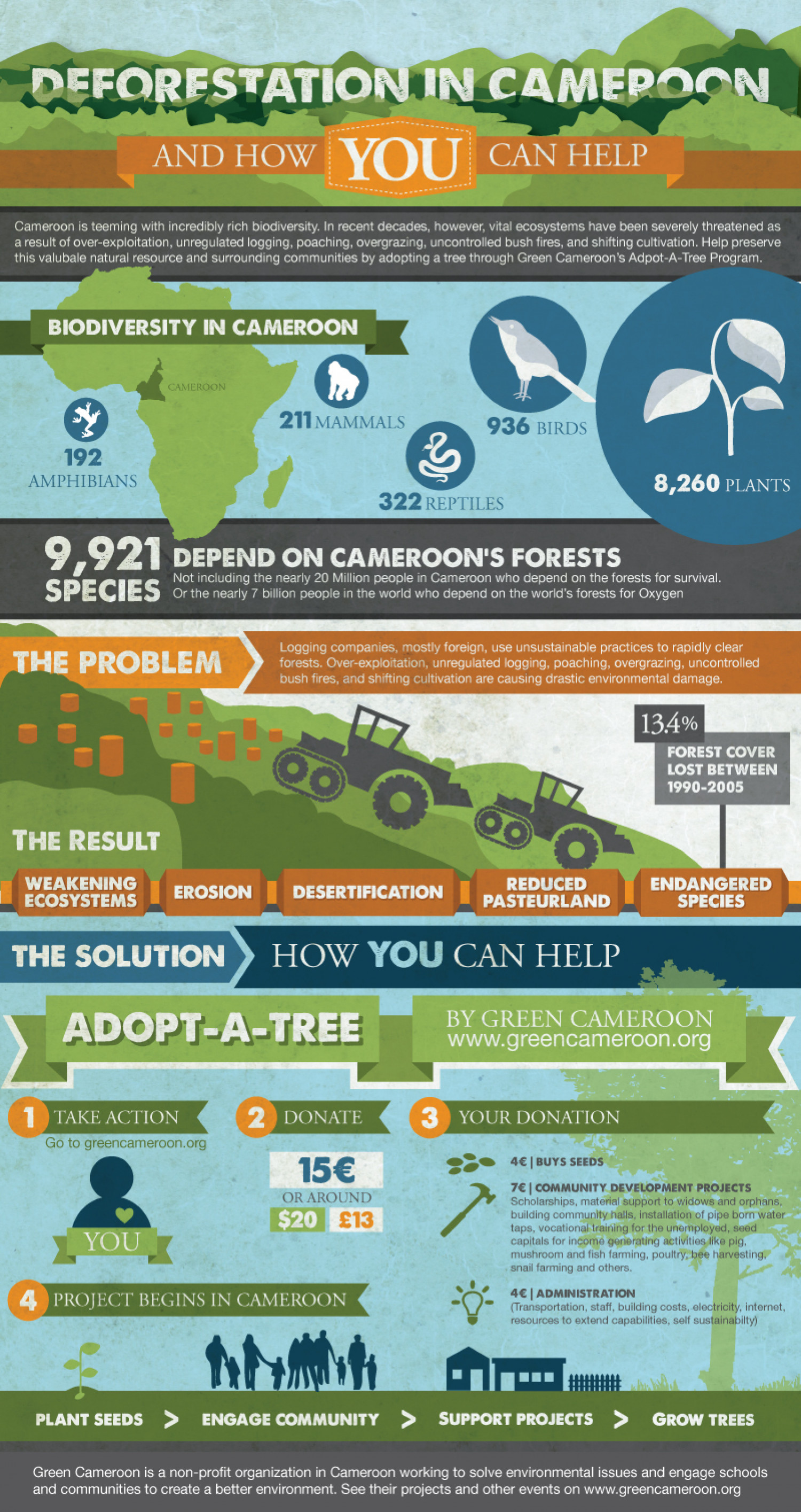 Deforestation In Cameroon Infographic