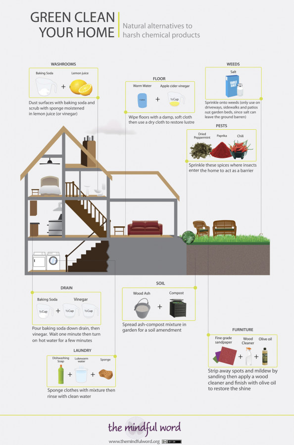 Green Clean Your Home Infographic