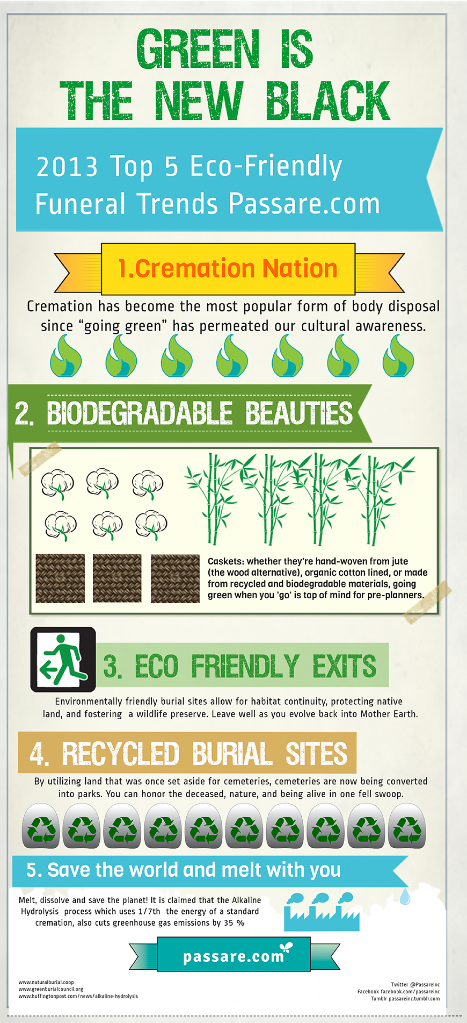 Green is the New Black Infographic