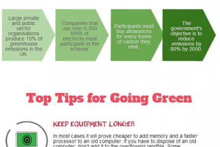 Green IT Infographic