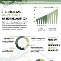 Green Revolution Infographic