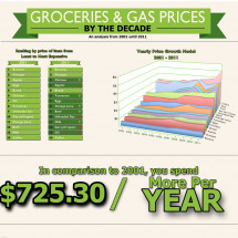 Groceries & Gas Prices (2001-2011) Infographic