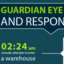Guardian Eye Infographic