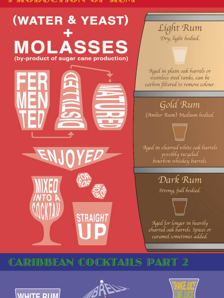 Guide to Caribbean Rum Infographic