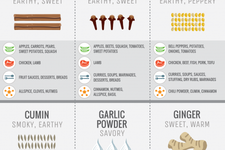 Guide to Flavoring with Spices (vertical) Infographic
