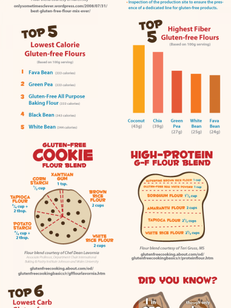 Guide to Gluten-Free Flour Blends Infographic