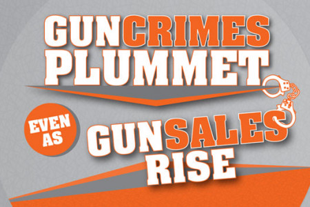 Gun Crimes Plummet Even as Gun Sales Rise Infographic