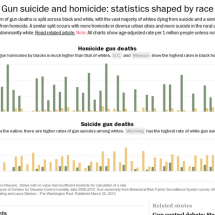 Gun suicide and homicide: statistics shaped by race Infographic