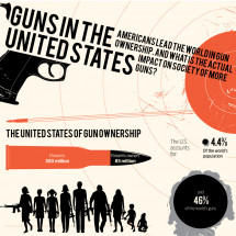 Guns in the United States Infographic