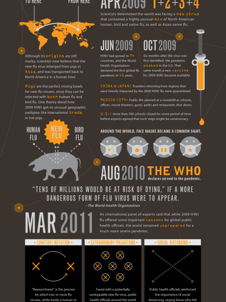 H1N1 Swine Flu Infographic