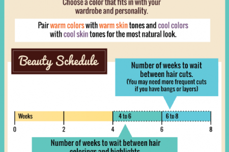 Hair Affair: The Business of Looking Fabulous Infographic