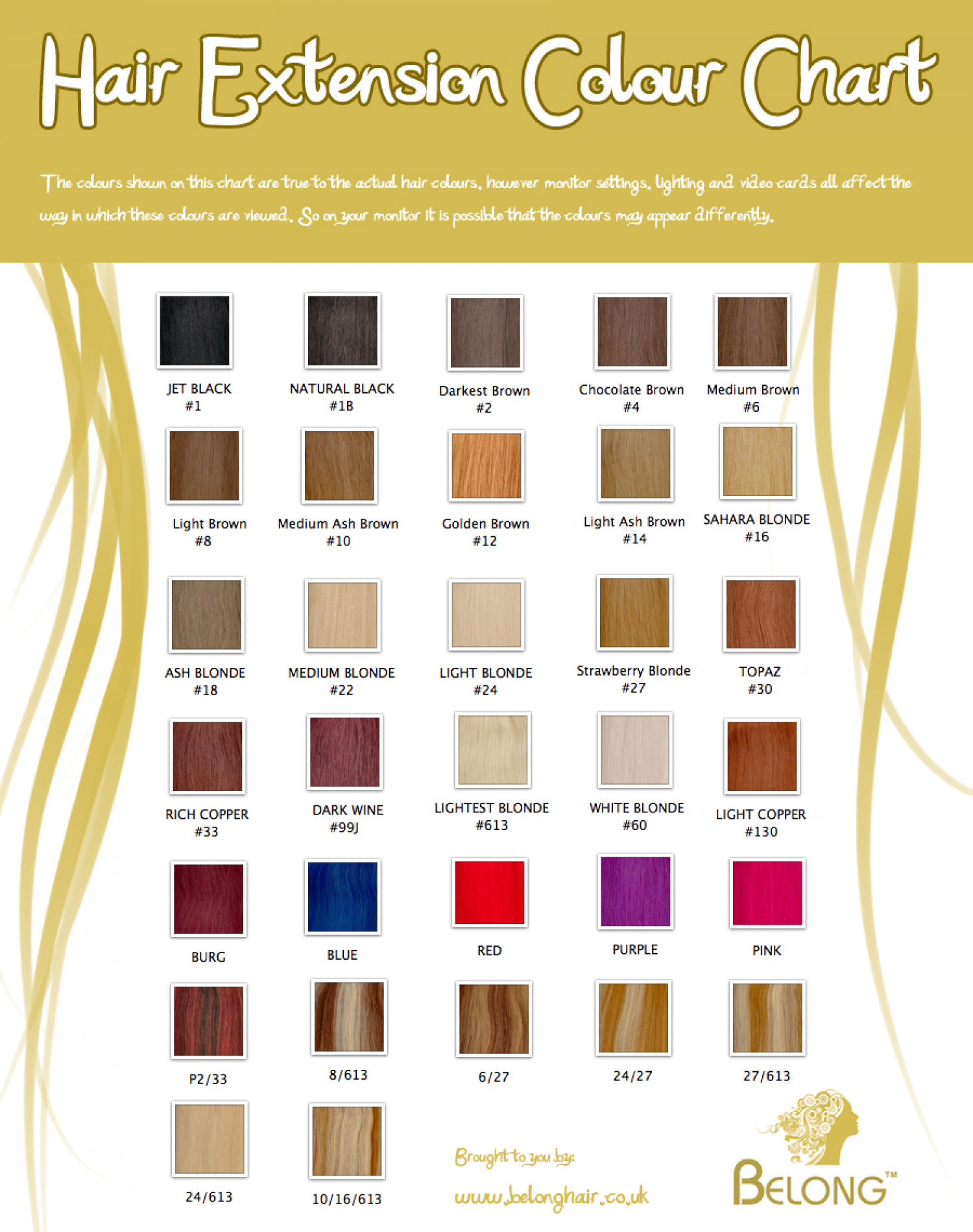 Hair Extension Colours Infographic Infographic