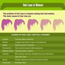 hair loss Infographic