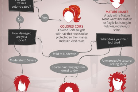 Hair Styling For New York Fashion Week Infographic