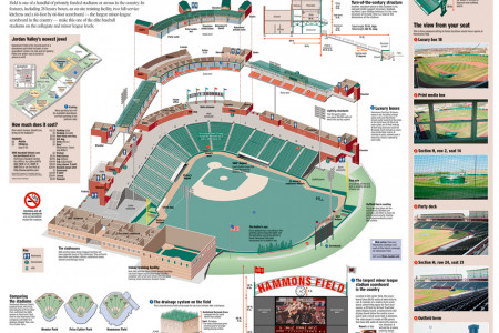 Hammons Field Infographic