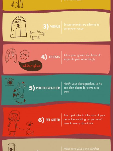 Pets and wedding Infographic