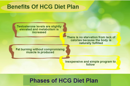 HCG DIET PLAN - An Effective Weight Loss Program  Infographic