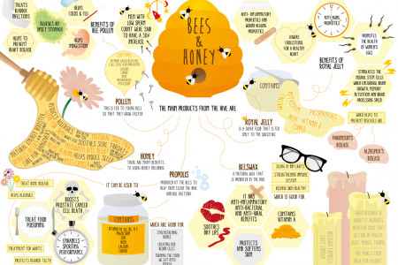 Health Benefits of Honey Infographic