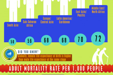 Health of the Muslim World Infographic