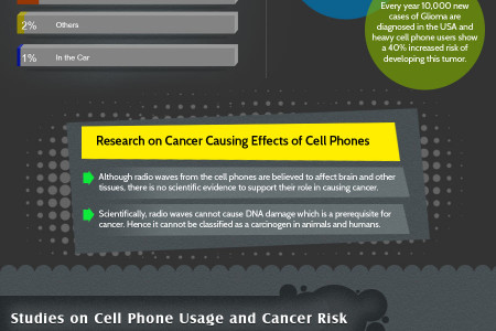 Health Risks of Cell Phone Usage (Infographic) Infographic