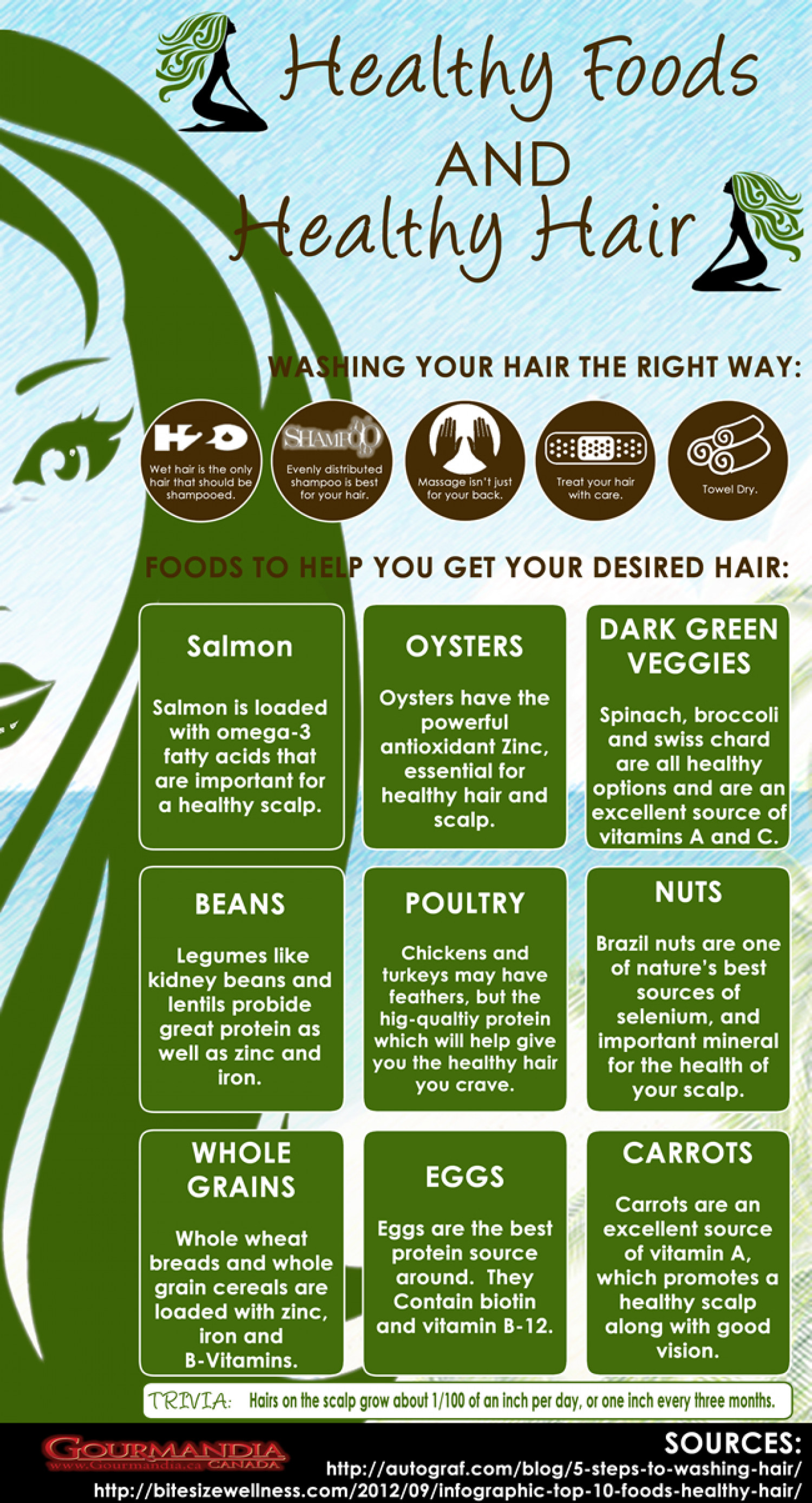 Healthy Foods and Healthy Hair Infographic