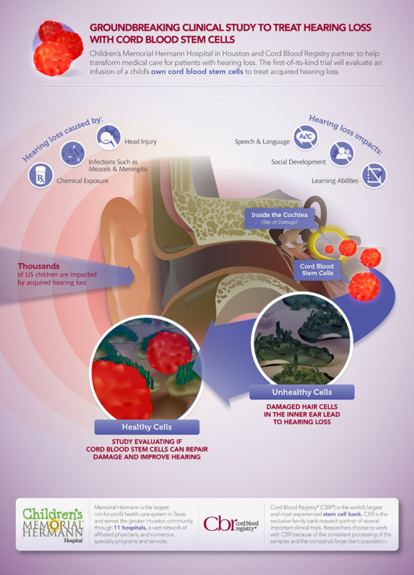 Hearing Loss Research Using Cord Blood Infographic