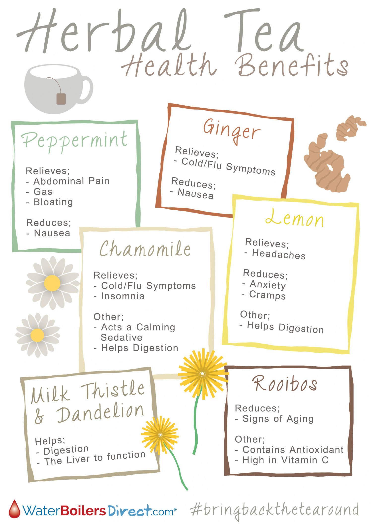 Herbal Tea Health Benefits  Infographic
