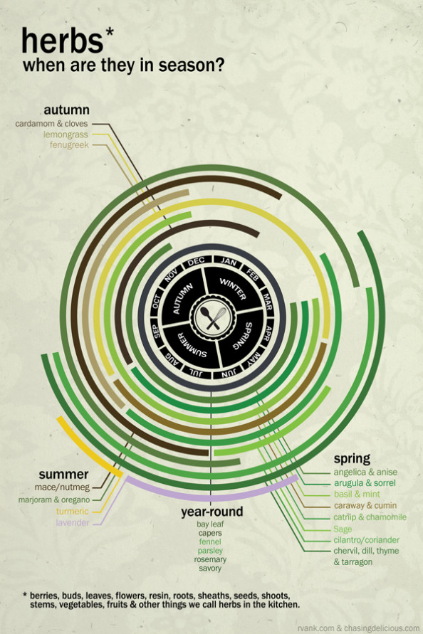 Herbs: When Are They in Season? Infographic