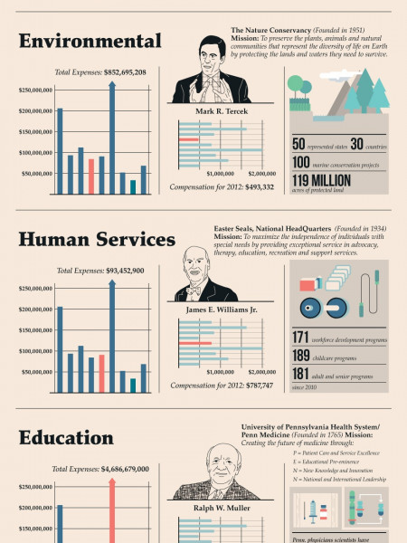 Highest Paid CEOs in Charity Infographic