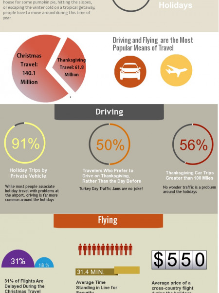 Holiday Travel Stats Infographic